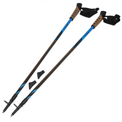 Палки для скандинавской ходьбы (трекинговые палки) SportVida SV-RE0012
